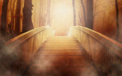 Transfiguration of Jesus, Transfiguration of Ourselves